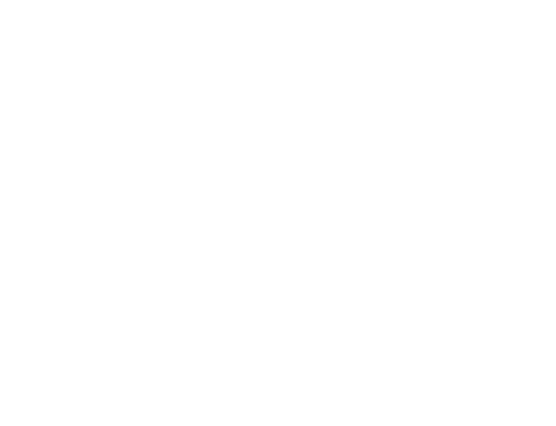 Redwood SEO Logo White on Transparent